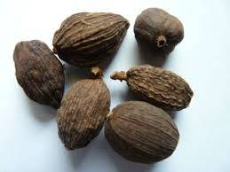 BEST PRICE FOR BLACK CARDAMOM WITH GOOD QUALITY