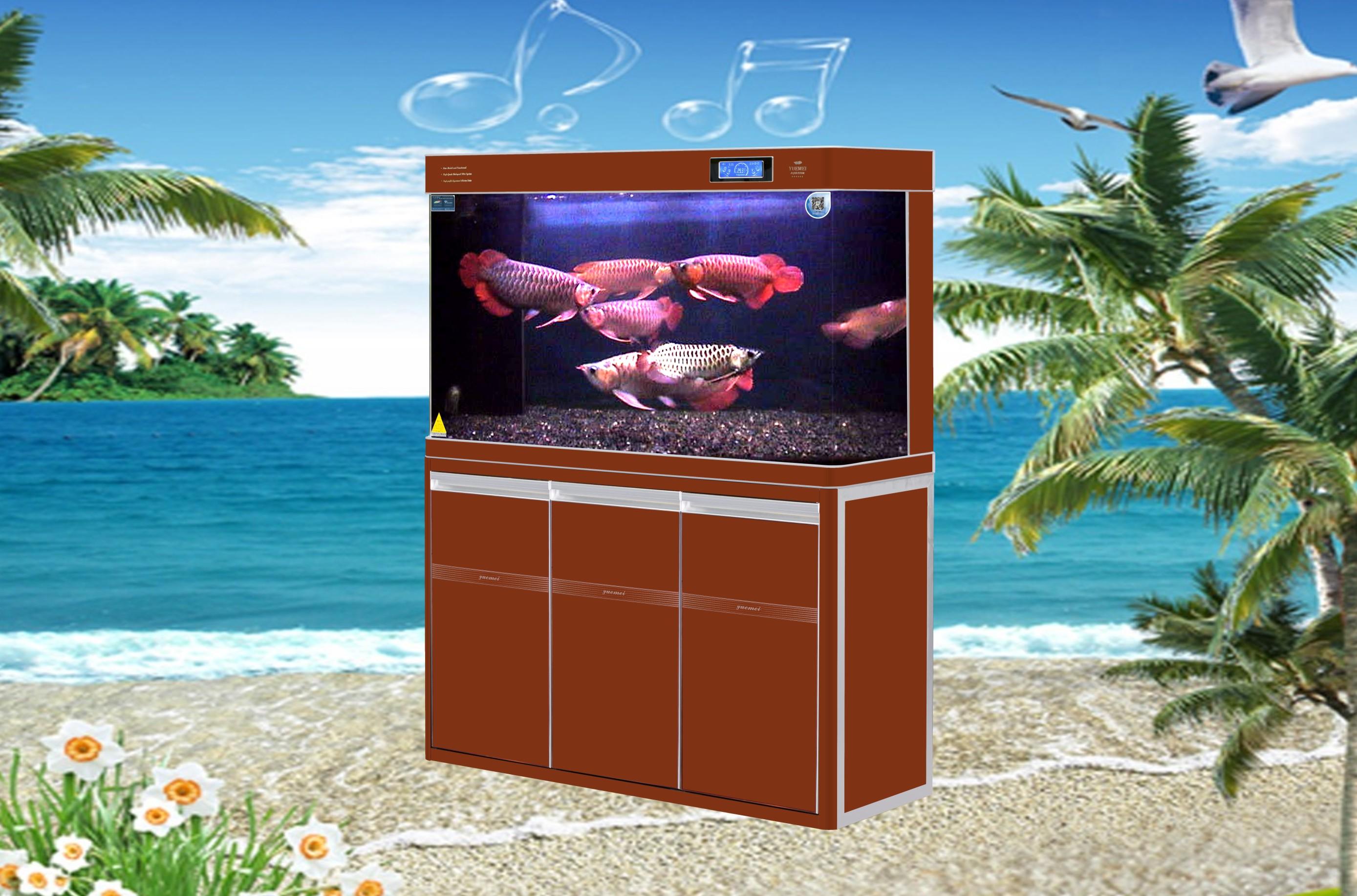 Glass Aquariums tank