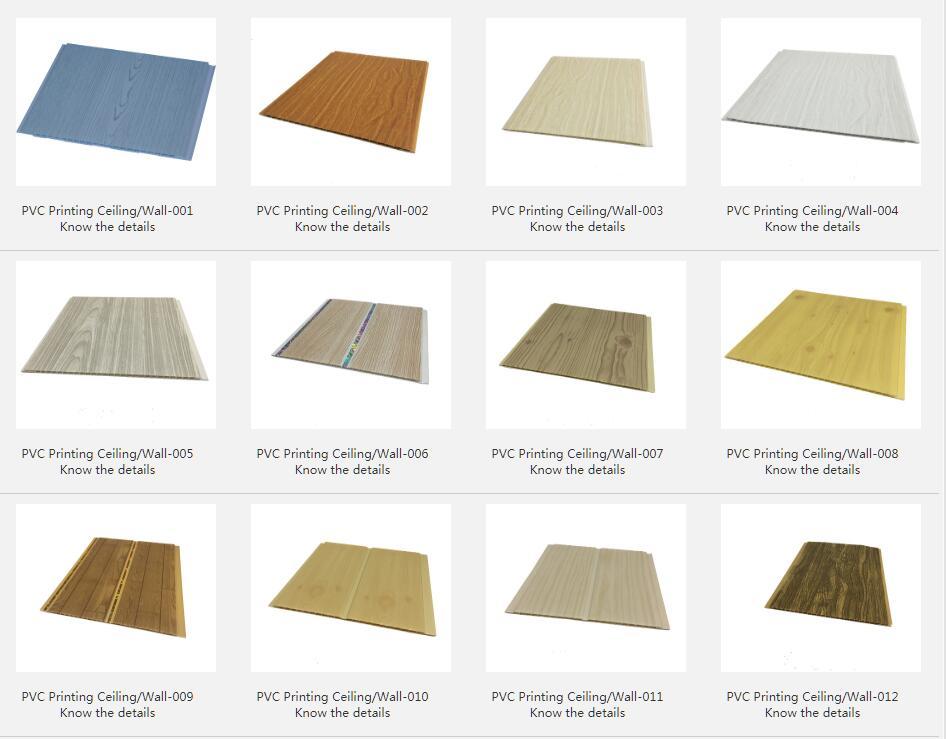 PVC Printing Ceiling/Wall