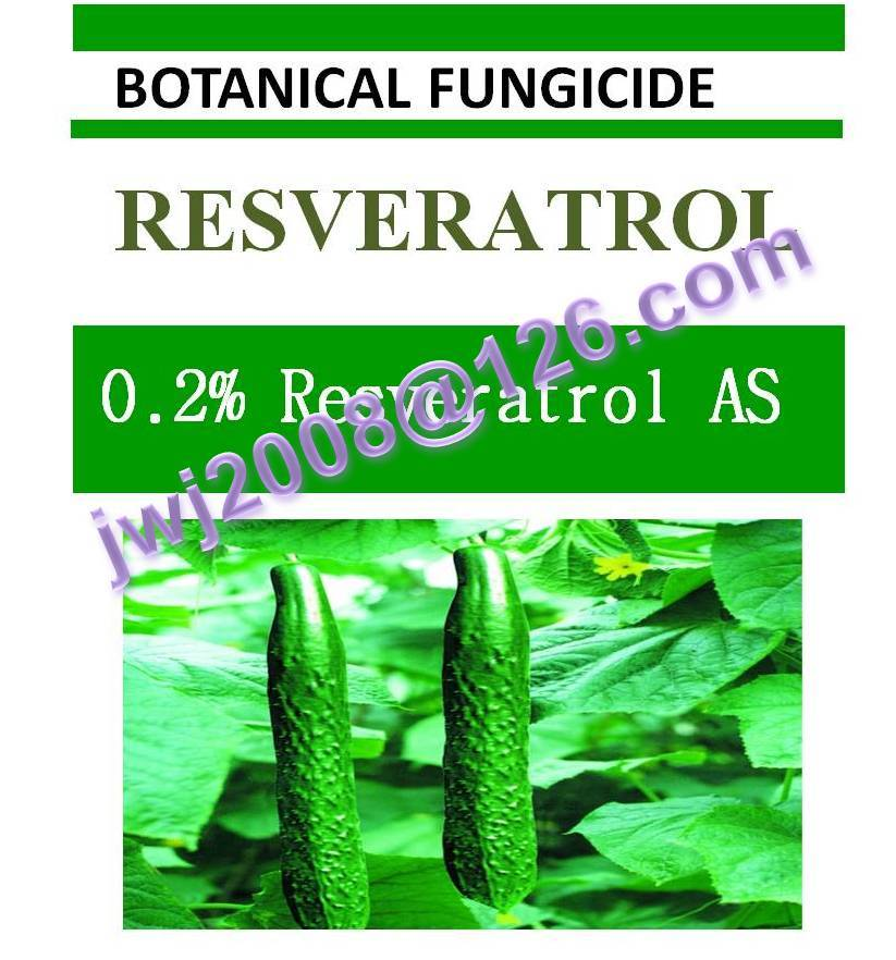 0.2% Resveratrol AS, biopesticide, botanic bactericide, organic, natural