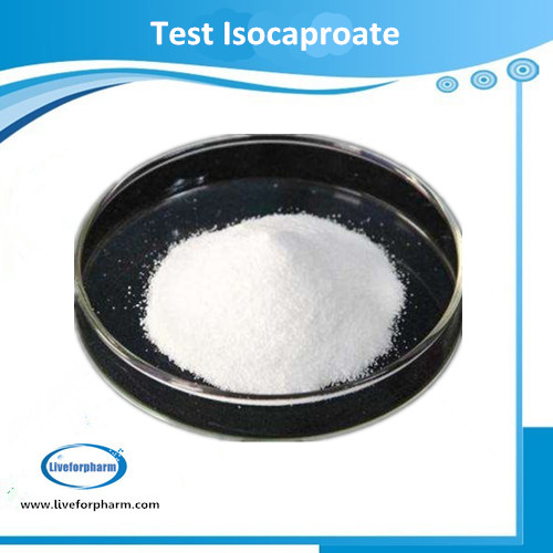 TESTOSERIES Testo Isocaproate CAS 15262-86-9 98.8% above purity
