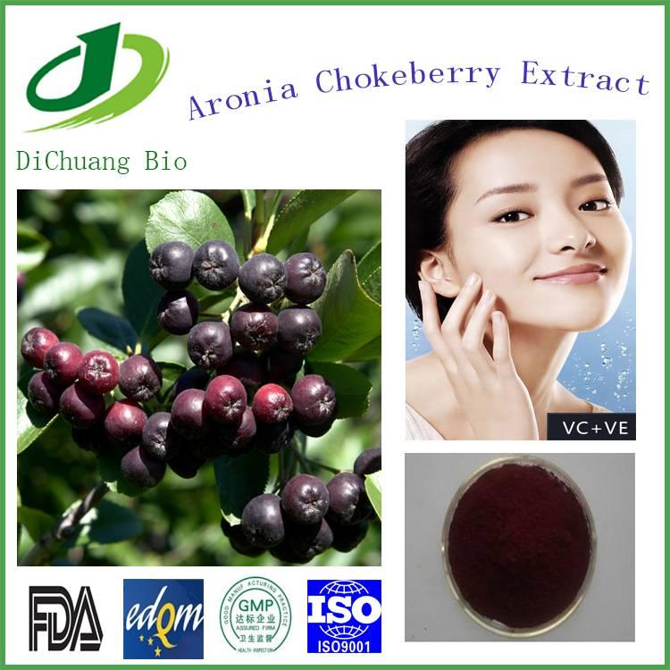 Aronia Melanocarpa Extract, Chokeberry Extract 84082-34-8