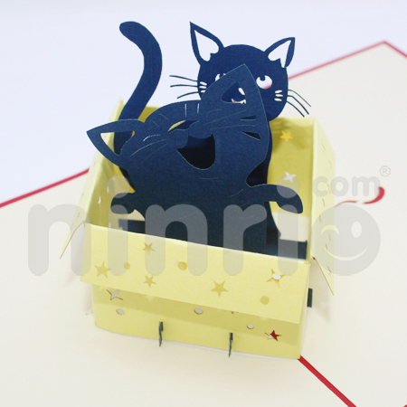 Cat in box Pop Up Card Handmade Greeting Card