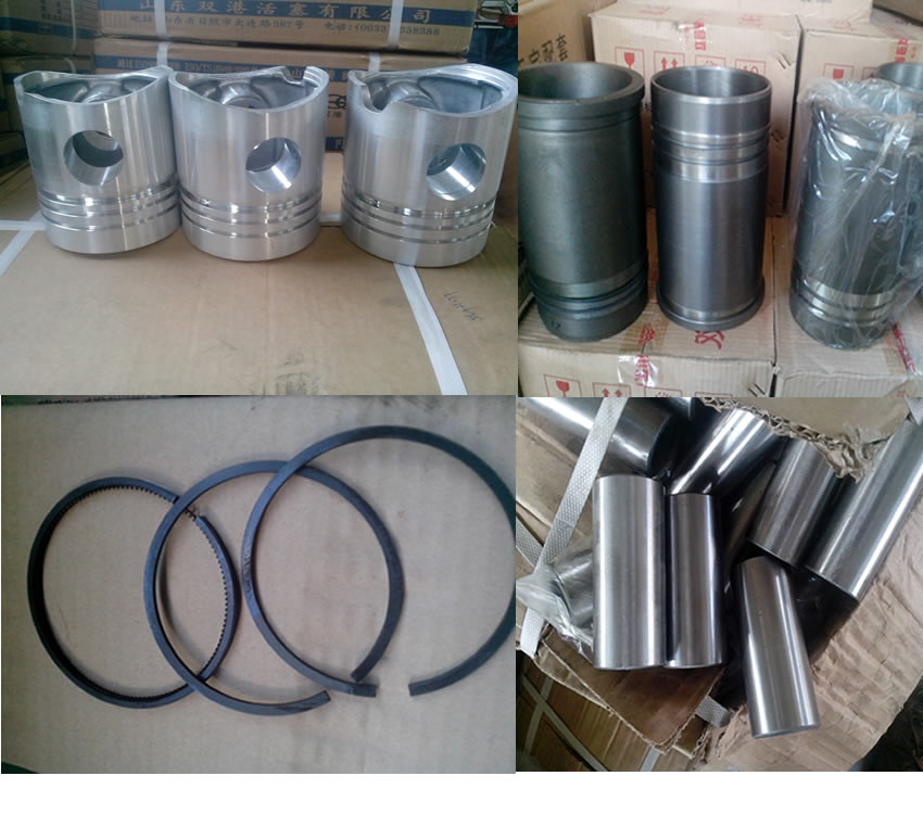 Piston/piston ring/piston pin/liner of diesel engine spare parts for chinese brand ricardo engines