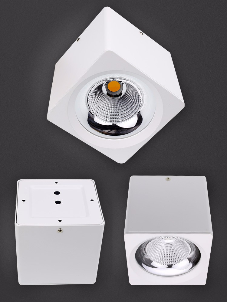 Popular Design White Color Surface Mounted LED Ceiling Light
