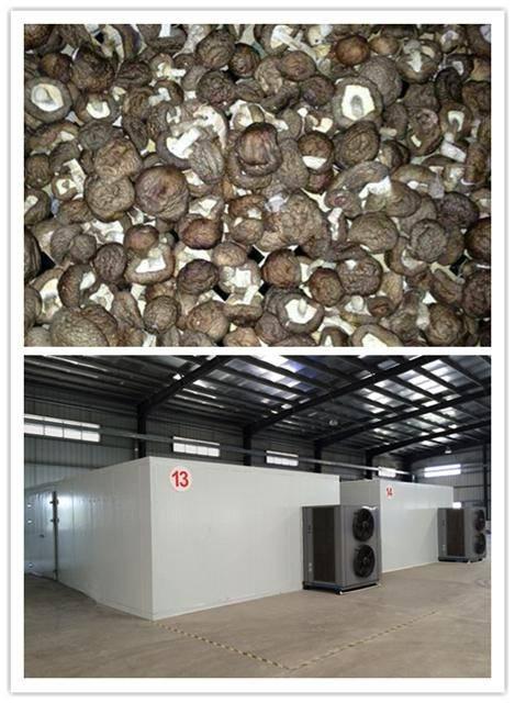 hot air mushroom dryer ,70% energy saving, air source heat pump technology,Intelligent temperature a