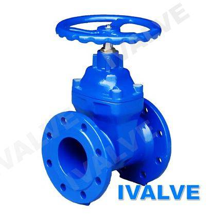 Resilient Seated Gate Valve non rising stem