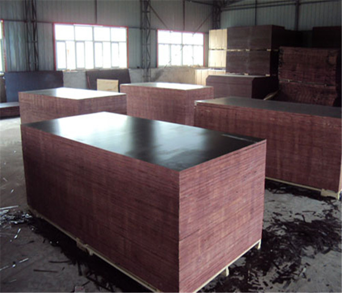 12202440mm Film Faced Plywood for Building Construction