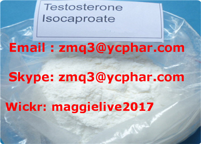 Pharm Grade Anabolice Steroids Powder Testosterone Isocaproate for Muscle Building 15262-86-9