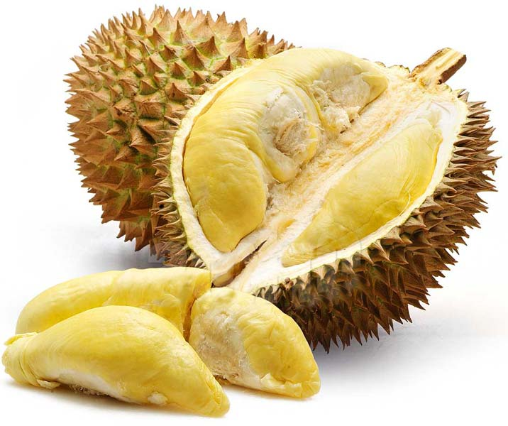 FRESH DURIAN FOR SALE
