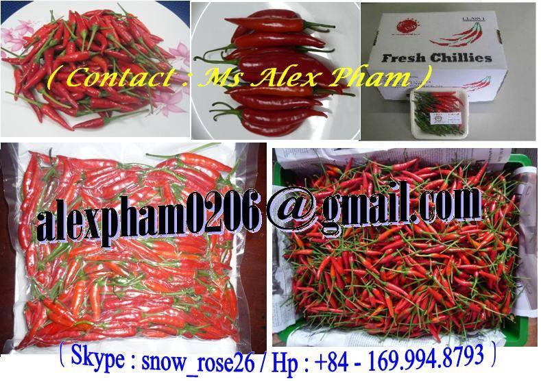 FRESH CHILLI/ CABE MERAH/ FROZEN CHILLI/ SMALL RED CHILLI/ BELL PEPPER/ CAPSICUM/ CHILLI POWDER