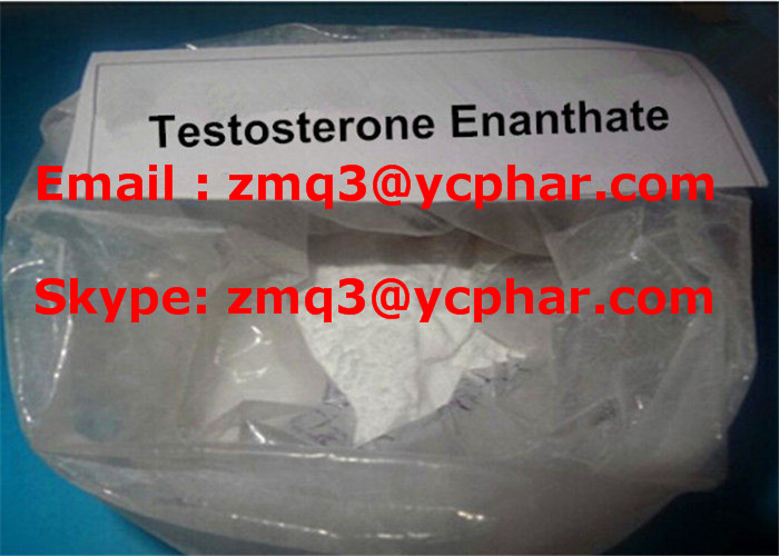 Testosterone Enanthate White Crystalline Powder Steroid Test E for Muscle Building