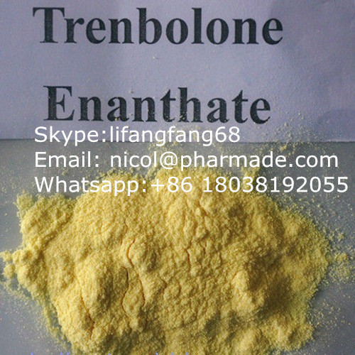 99.8% High Purity steroids powder Trenbolone Enanthate Powder