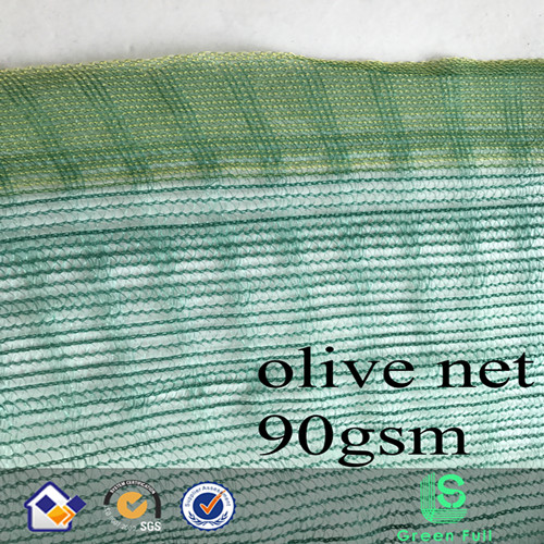 triangle mesh olive net