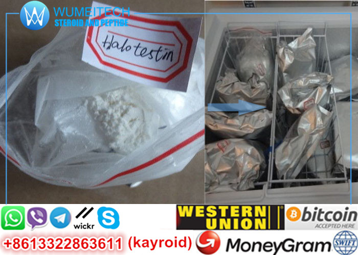 Fluoxymesterone Oral Anabolic Steroids Halotestin Powder Recipes Legit Ora-Testryl