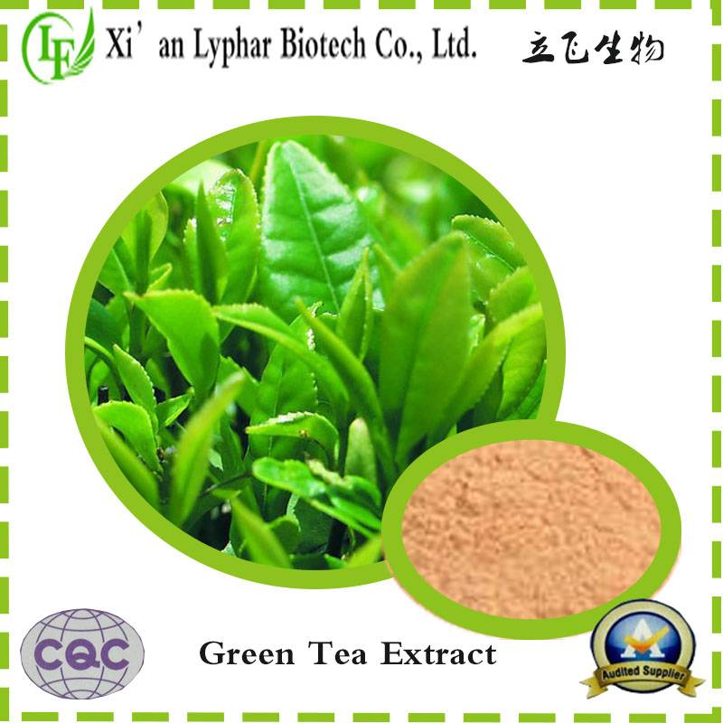 Natural Green Tea Extract, Tea polyphenol - lyphar