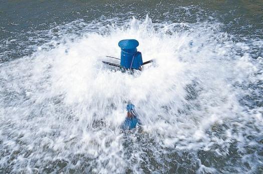 3 Impeller Aerator Shrimp Pond Farming Aerator Price
