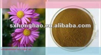 Pure Natural 4% polyphenols Echinacea herb P.E.