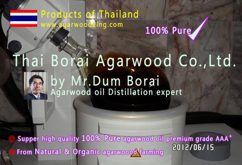 agarwood oil-alosewood-gaharu