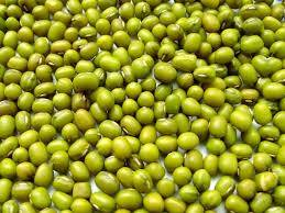 Green Mung (Moong) Beans $750 USD/MT as CNF India Ports