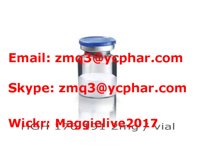 Effective Protein Peptide Hormones Human Growth HGH Frag 176 191 For Athletic