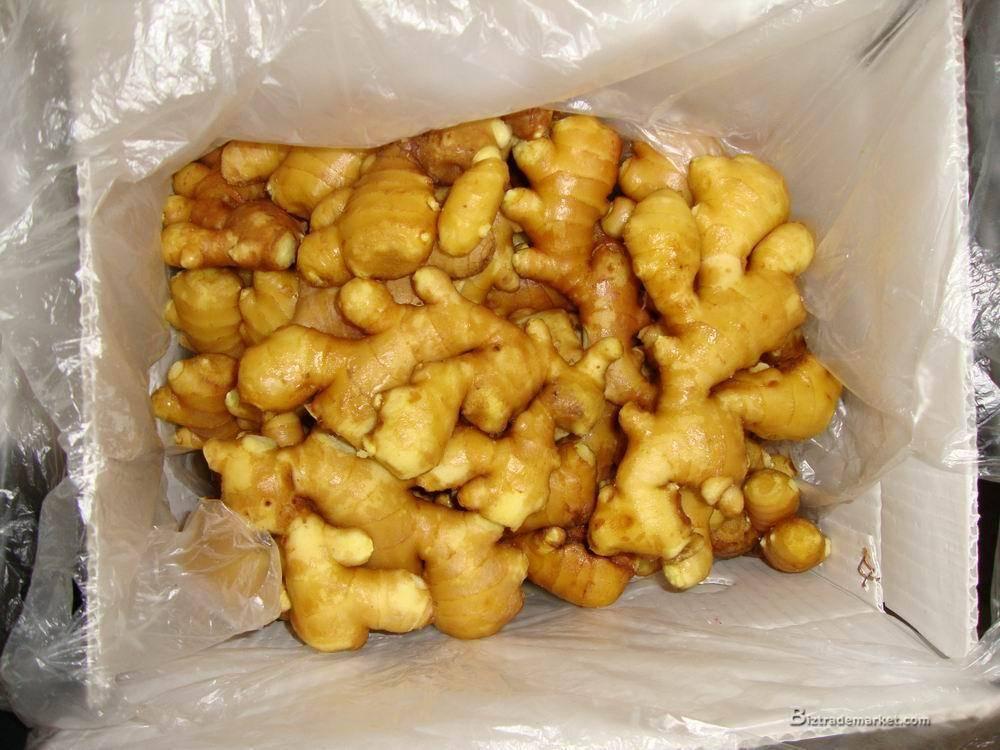 2010 Fresh Ginger