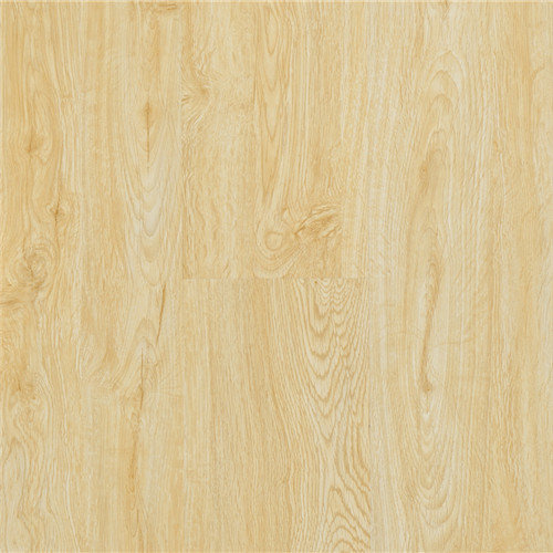 Supply High Quality 12mm Thickness Laminate Flooring