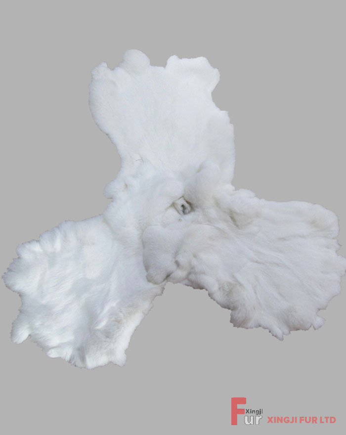 White Rabbit Fur Skin