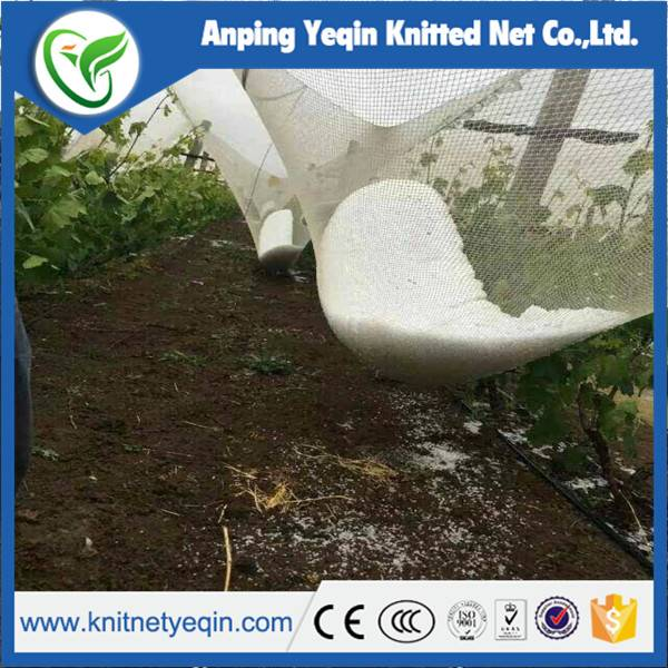 virgin HDPE anti hail net for agriculture
