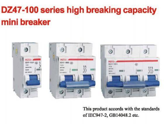 DZ47-100 Series High Breaking Capacity Mini Breaker