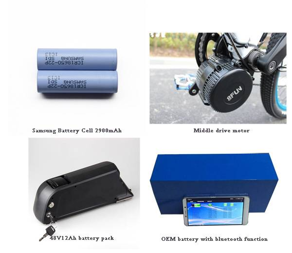 Pro-Greenergy 48V 20Ah electric bicycle battery