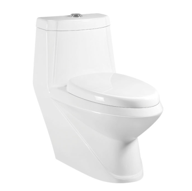ceramic sanitary ware washdown s-trap 250mm Roughing-in toilet water closet
