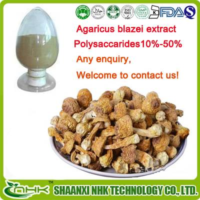 Anti cancer 100% natural and pure Agaricus blazei extract