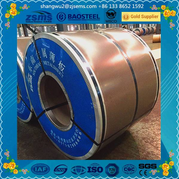 Galvanized Steel Coil with Zero Spangle from Leader Manufacturer of China