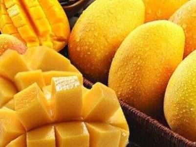 Mango Seed Extract