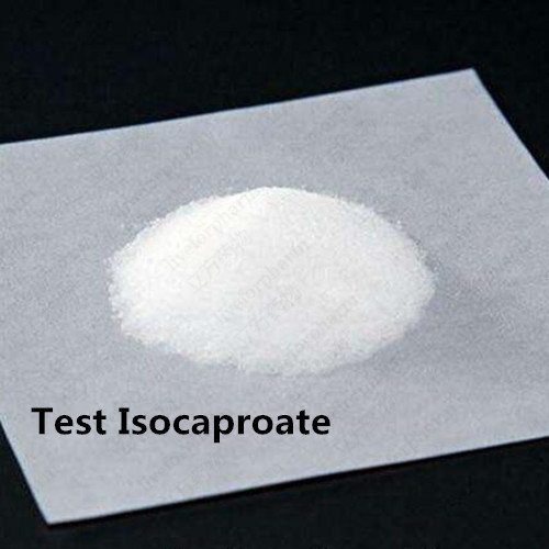 Anabolic Steroid powder Testosterone Isocaproate (Test ISO) CAS 15262-86-9