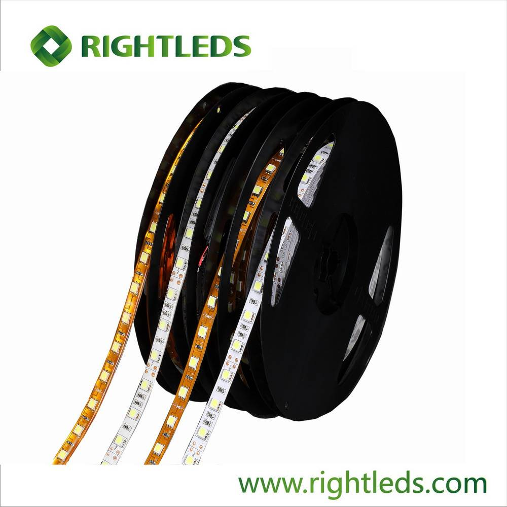 3 Years Warranty 60leds/meter Flexible SMD5050 led strip