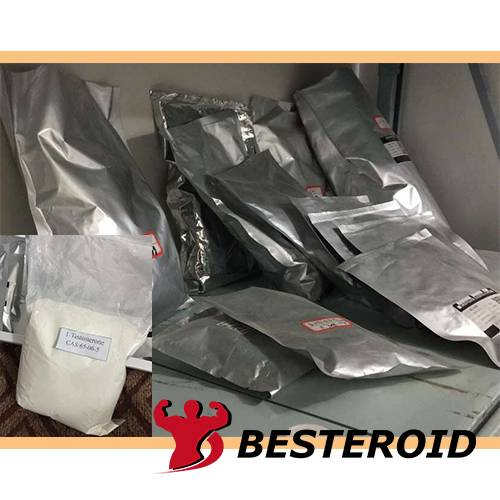 High quality steroid powder Testosterone undecanoate with good price CAS 5949-44-0