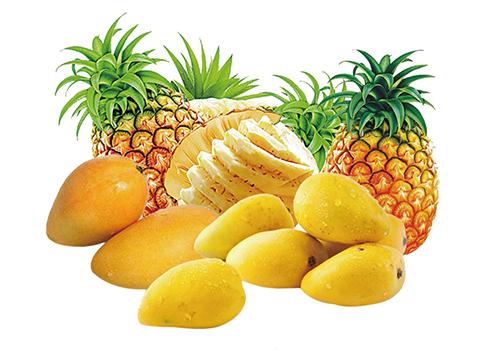 Turnkey Industrial Mango/Pineapple Beverage Processing Line