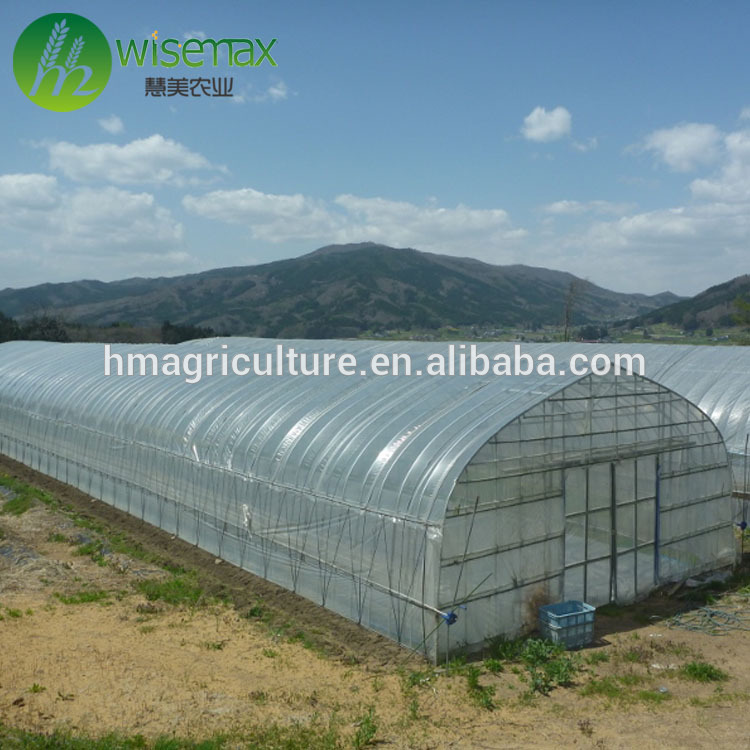 15 years warranty cheap plastic agriculture single span tunnel greenhouse