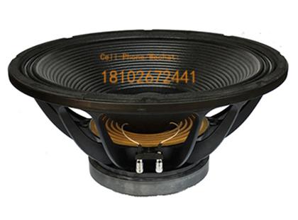 Professional Audio Actpto 18 Inch PA Loud Speaker 650W Subwoofer
