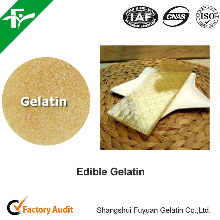 china supplier gelatin sheets