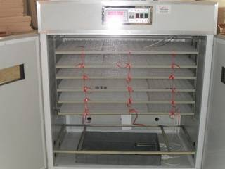 Egg Incubator And Hatcher 2112 Chicken Eggs
