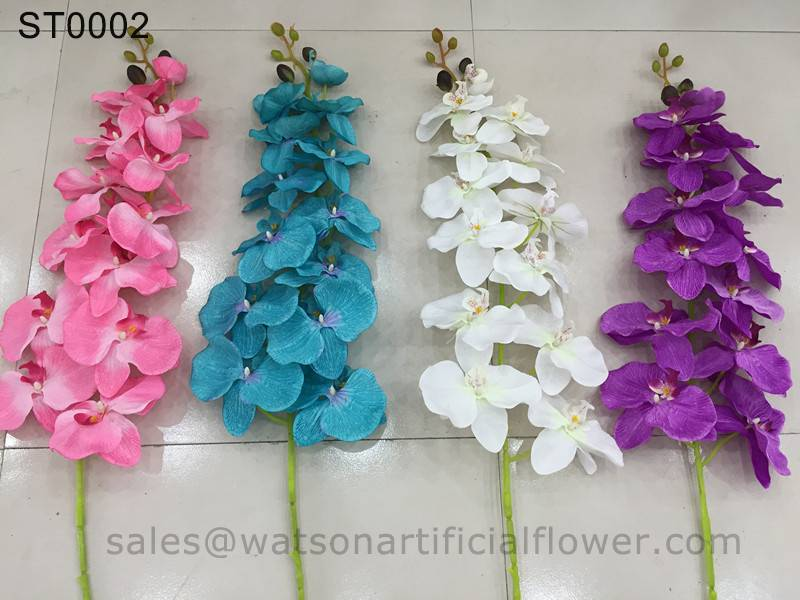 import orchid flower