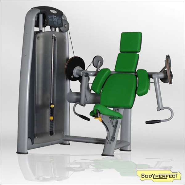 Commercial Gym Equipment Seated Biceps Curl for Strength Training