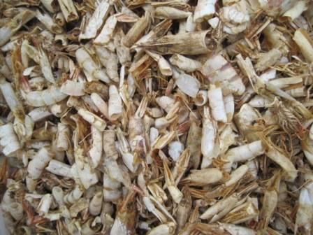 Dried Shrimp Shell, Dried Crab Shell, Fishmeal