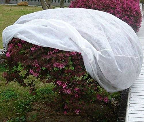 Non Woven Frost Protective Cover