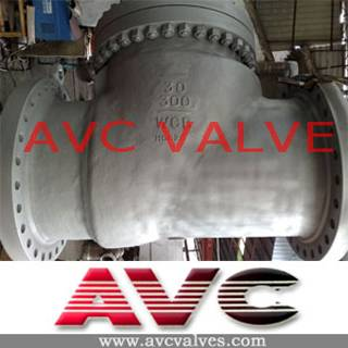 AVC CAST STEEL CHECK VALVE