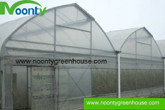 Butterfly Roof Opening Greenhouse