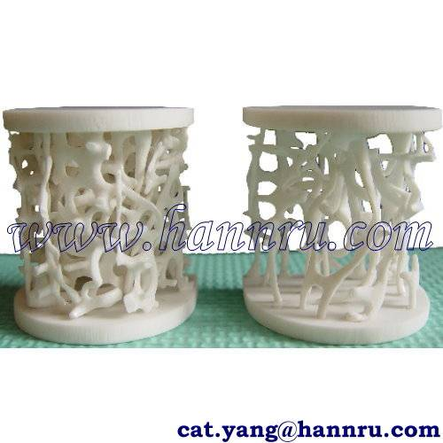Dental model MAB-01 Bone Mineral Density Model - Hann Ru